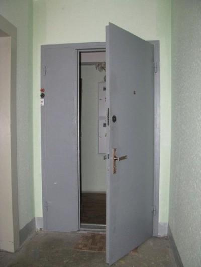 Дверь с открывающейся створкой