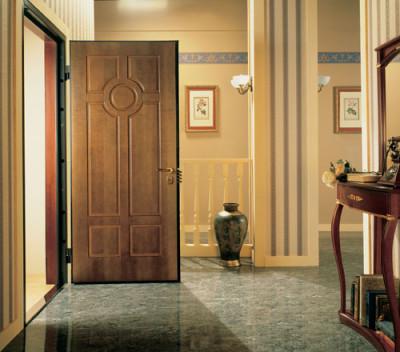 Стальные двери в дом