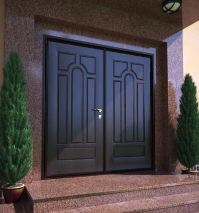 Двустворчатая нестандартная дверь